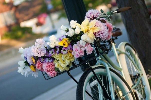 Доставка цветов флориста цветов кумертау